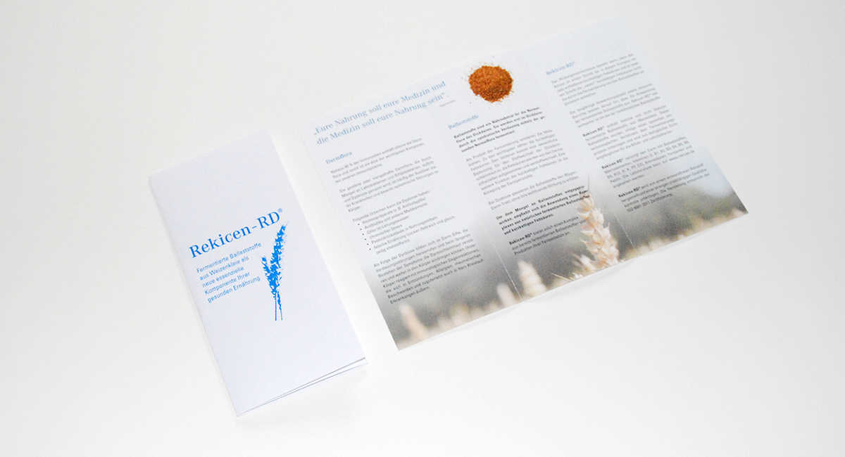 Rekicen-Flyer